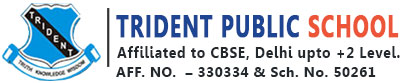 Trident Public School